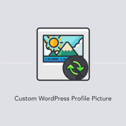 Changing a user profile picture in WordPress site