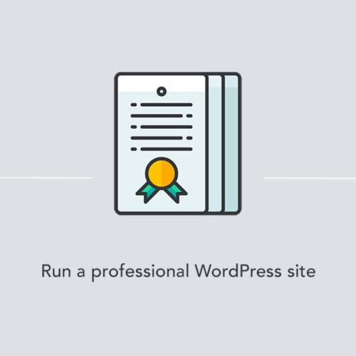 Requirements to run a professional WordPress site